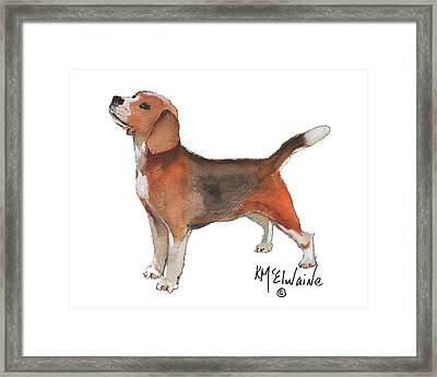 Beagle Watercolor Painting By Kmcelwaine Framed Print