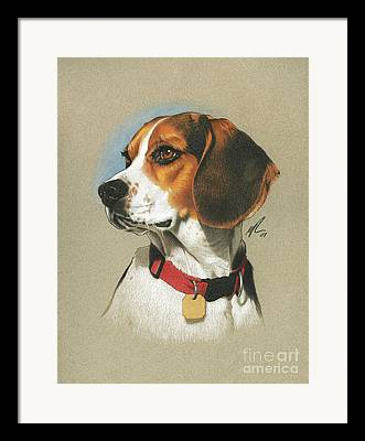 Pet Dog Drawings Framed Prints