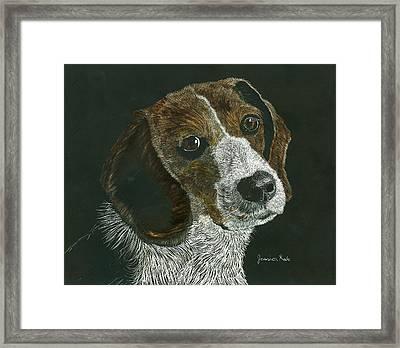 Beagle Portrait Framed Print by Jessica Kale