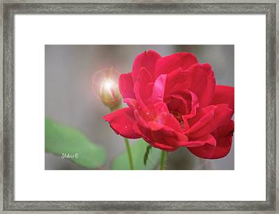 Beam Of Light Framed Print