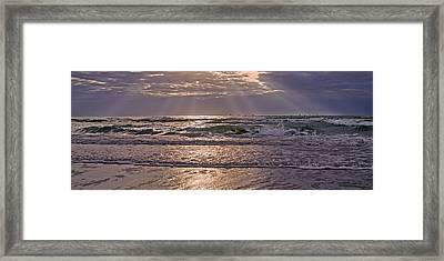 Beaming Paradise Framed Print by Betsy Knapp