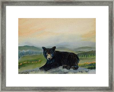 Bear Alone On Blue Ridge Mountain Framed Print