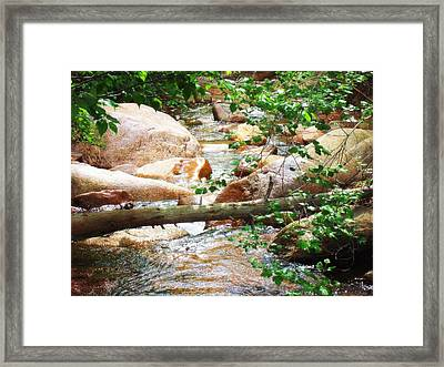 Framed Print featuring the photograph Bear Creek Cheyenne Canyon by Clarice  Lakota