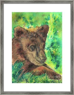 Bear Cub Framed Print by Tracey Hunnewell
