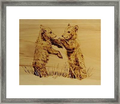 Bear Cubs Framed Print by Chris Wulff