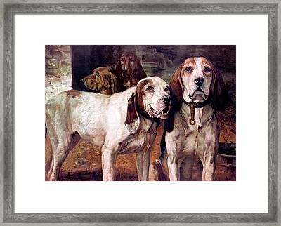 Bear Dogs Without Border Framed Print by H R Poore