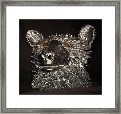 Bear Head Bust Framed Print by Jeff Orebaugh
