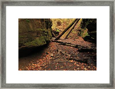 Bear Hollow In Autumn 1 Framed Print