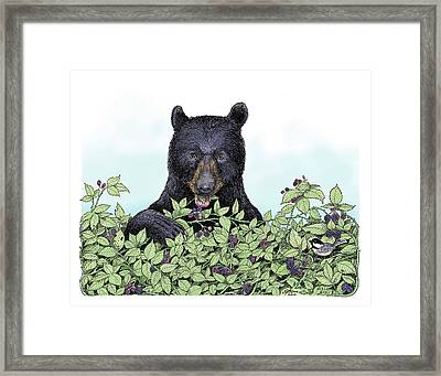 Bear In The Berries Framed Print