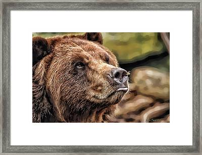 Bear Kiss Framed Print