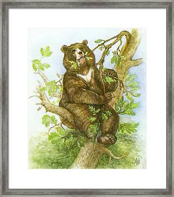 Bear Framed Print by Natalie Berman