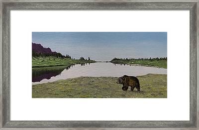 Bear Reflecting Framed Print
