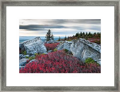 Bear Rocks Preserve West Virginia Framed Print by Mark VanDyke