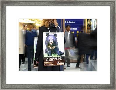 Bear Rush 2 Framed Print by Jez C Self