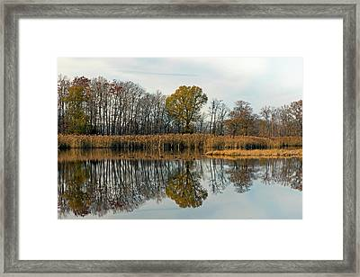 Bear Swamp Mirror Framed Print by Jennifer Nelson