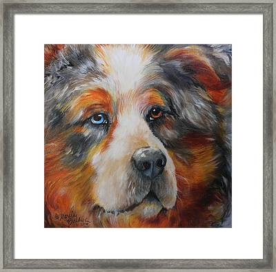 Bear The Catahoula Cur Framed Print