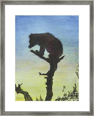 Bear With A View Framed Print by Ann Radley
