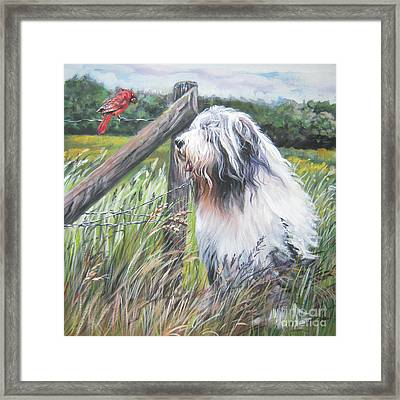 Bearded Collie With Cardinal Framed Print by Lee Ann Shepard