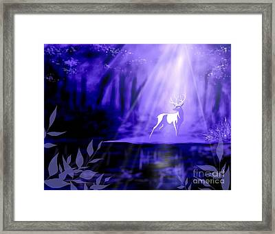Bearer Of Wishes Framed Print