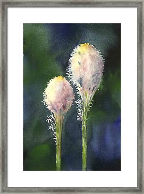 Beargrass Framed Print