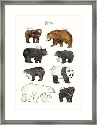 Bears Framed Print by Amy Hamilton