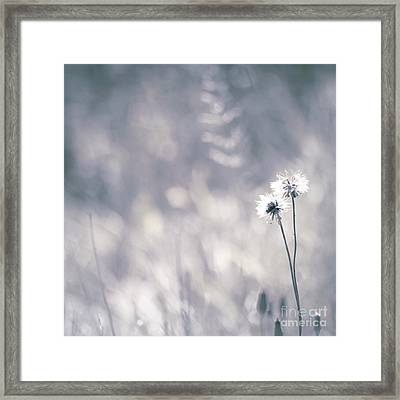 Framed Print featuring the photograph Beaute Des Champs - 0101 by Variance Collections
