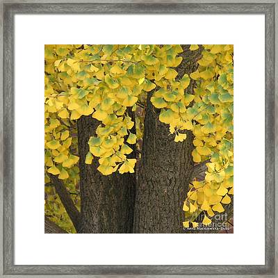 Beautiful Autumn Framed Print by Anna Folkartanna Maciejewska-Dyba