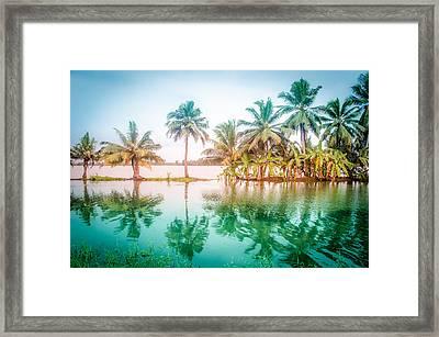 Beautiful Backwater Kerala, India. Framed Print