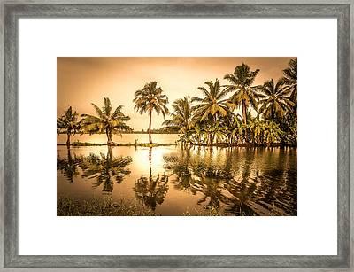 Beautiful Backwater View Of Kerala, India. Framed Print