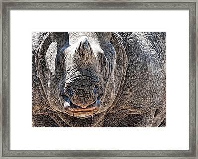 Beautiful Beast Framed Print