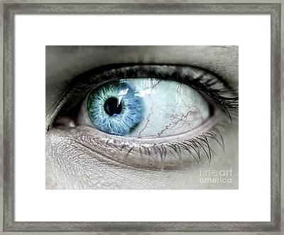 Beautiful Blue Eye Framed Print