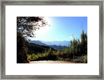 Beautiful Colombia Near Rio Frio Framed Print
