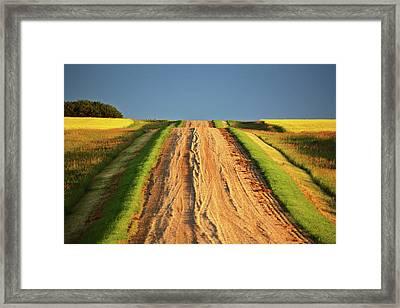 Beautiful Colors Along A Saskatchewan Country Road Framed Print