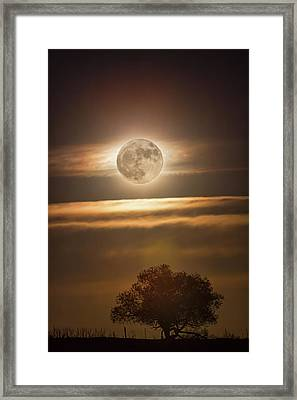 Beautiful Country Night Framed Print by James BO Insogna