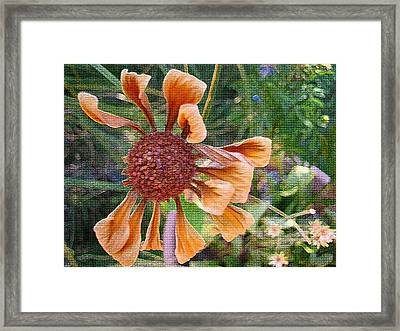 Beautiful Disaster Framed Print by Holly Ethan