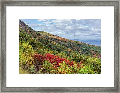 Framed Print featuring the photograph Beautiful Fall Foliage In The Blue Ridge Mountains by Lori Coleman