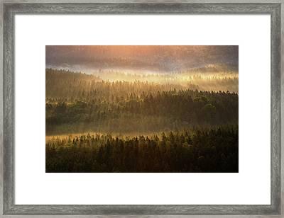 Beautiful Foggy Forest During Autumn Sunrise, Saxon Switzerland, Germany Framed Print