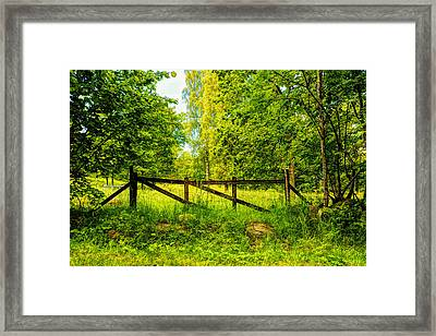 Beautiful Forest  Framed Print by Tommytechno Sweden