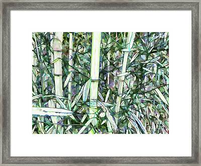 Beautiful Green Leaf Bamboo Framed Print by Lanjee Chee