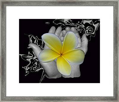 Beautiful Hands Framed Print by Amanda Vouglas