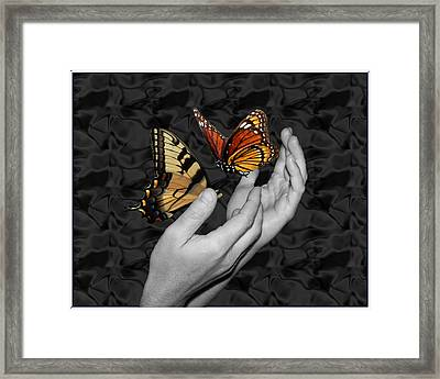 Beautiful Hands Two Framed Print by Amanda Vouglas