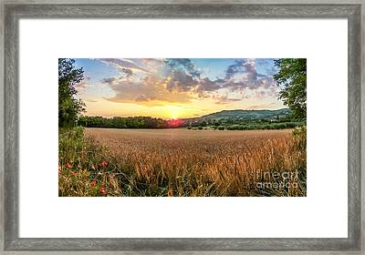 Beautiful Harvest Field Near Assisi At Sunset, Umbria, Italy Framed Print by JR Photography