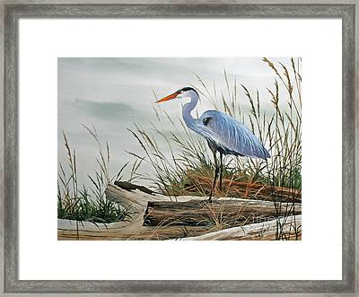 Beautiful Heron Shore Framed Print by James Williamson
