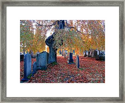 Beautiful Historic Camp Hill Cemetery Halifax Nova Scotia Framed Print by John Malone