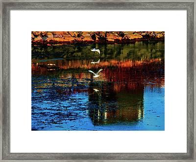 Beautiful II Framed Print