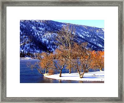 Framed Print featuring the photograph Beautiful Kaloya Park by Will Borden