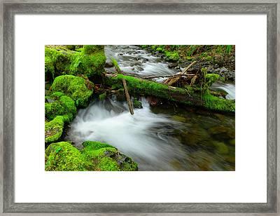 Beautiful Log Jam Framed Print