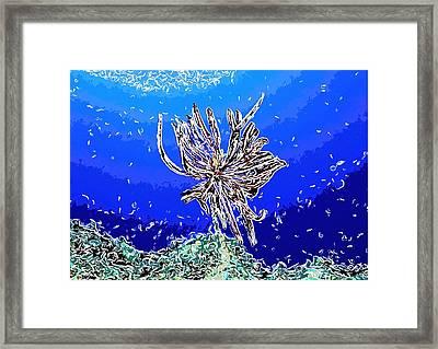 Beautiful Marine Plants 1 Framed Print by Lanjee Chee