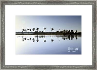 Beautiful Nature In Morning - Egypt. Framed Print