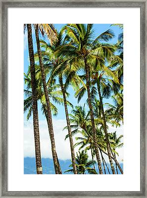 Framed Print featuring the photograph Beautiful Palms Of Maui 16 by Micah May